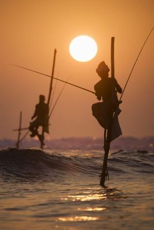 طريقة الصيد الشهيرة بسيريلانكا