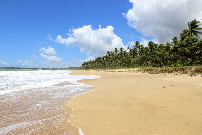 السياحة للعوائل في سريلانكا