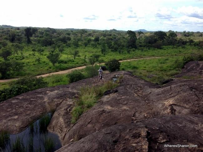 رحلة سفارى سيريلانكا في منتزه مينيريا الوطني