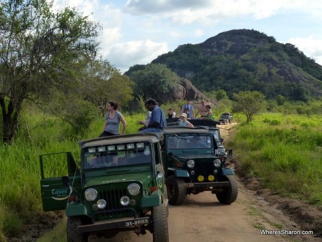 سيارات الجييب رحلة سفاري سريلانكا